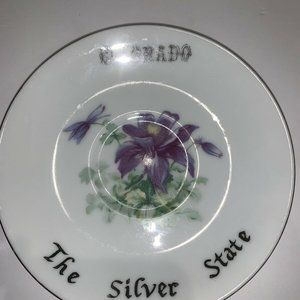 Colorado State VTG Collector Plate Saucer